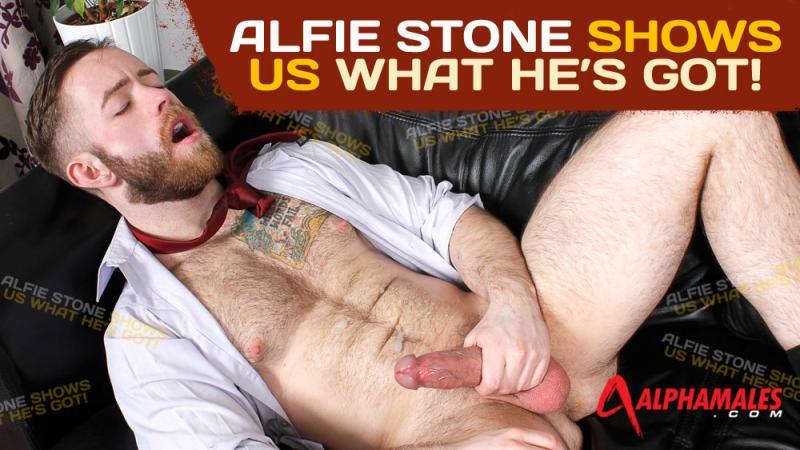AlphaMales - Alfie Stone