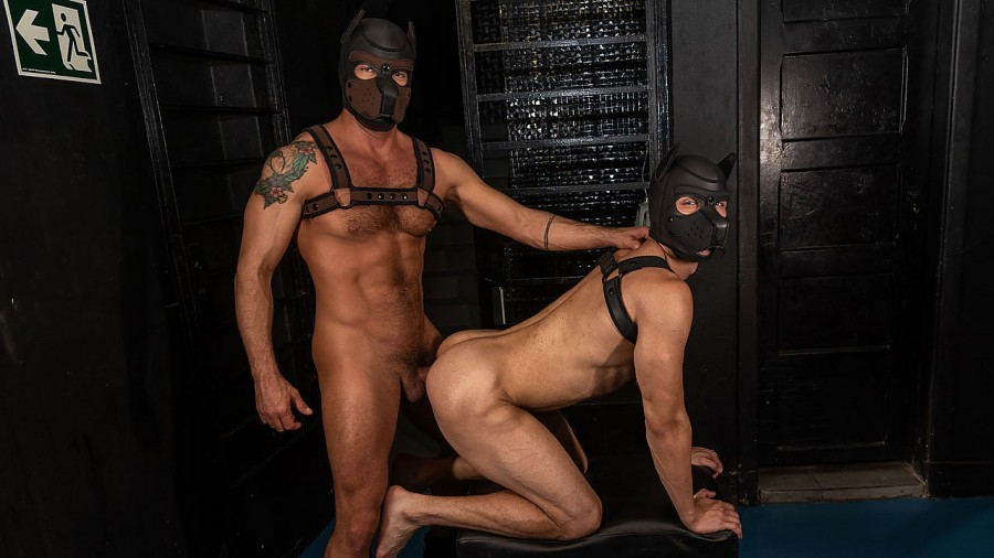 DominicPacifico - Alex Ronald & Dominic Pacifico - Daddy's Puppy - Dirty Dawgs Get it On