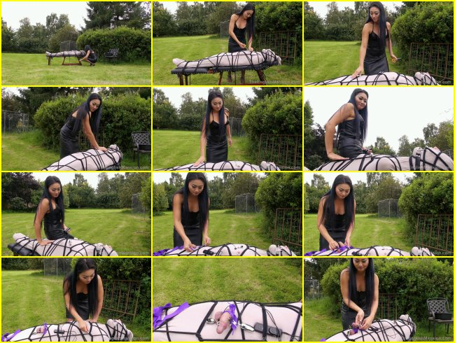 Lycra Bound - Mistress Amrita