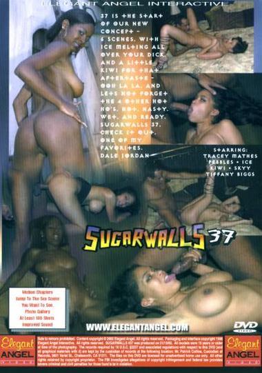 Sugarwalls #37