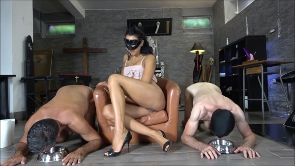 Mistress Gaia - Who's the best shit-eater ? (FullHD 1080p)