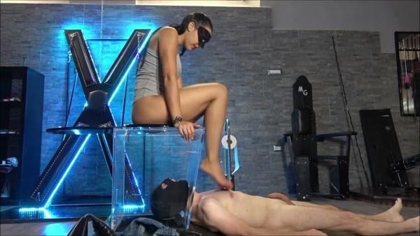 Mistress Gaia - Under my toilet chair (2020 / FullHD 1080p)