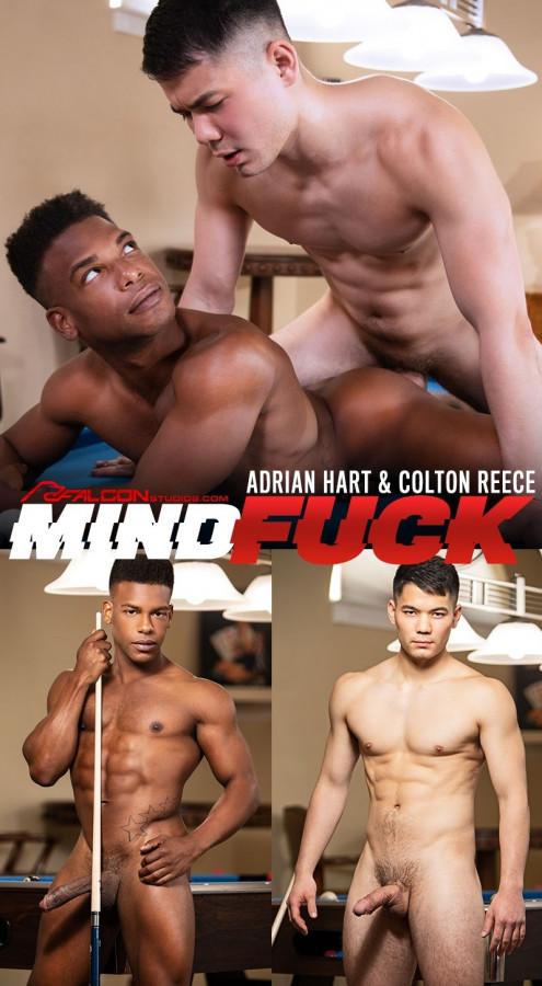 FalconStudios - Mind Fuck - Adrian Hart & Colton Reece