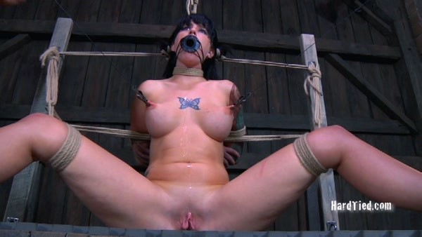 Tricia Oaks, Cyd Black - Proud [HardTied.com / HD 720p]