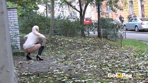 It's good to publicly piss in public you need to have a savvy! (FullHD 1080p)