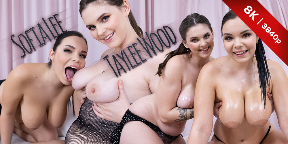 Sofia Lee, Taylee Wood, Sofia Lee, Taylee Wood, 22 Feb 2021, 3d vr porno, HQ 3840