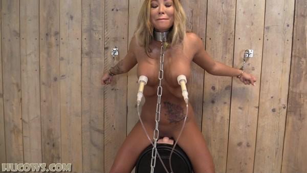 Natalia Forrest - Bondage and milking - Sybian Milking (2021 / FullHD 1080p)