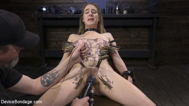 The Destruction of Cadence Luxe