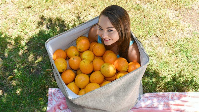 Orange You Glad Im So Tiny