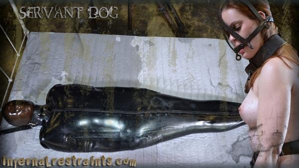 Hazel Hypnotic - BDSM, Bondage and Torture - Servant Dog (HD 720p)