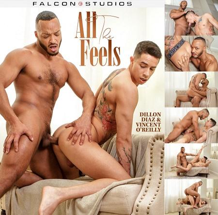 FalconStudios - Vincent OReilly & Dillon Diaz - All The Feels