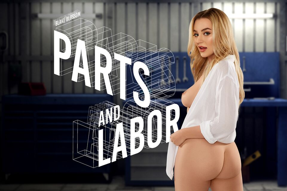 Parts and Labor, Blake Blossom, April 17, 2021, 3d vr porno, HQ 3584