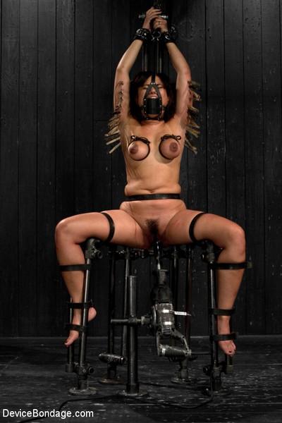 Annie Cruz - BDSM and Domination - Bitch in Heat (HD 720p)
