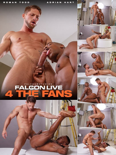 FalconStudios - Adrian Hart & Roman Todd - Falcon LIVE 4 The Fans