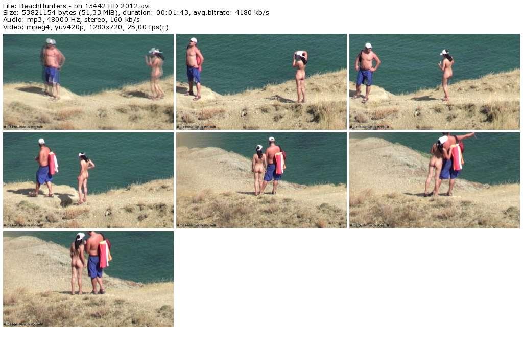 BeachHunters_-_bh_13442_HD_2012_thumb.jpg