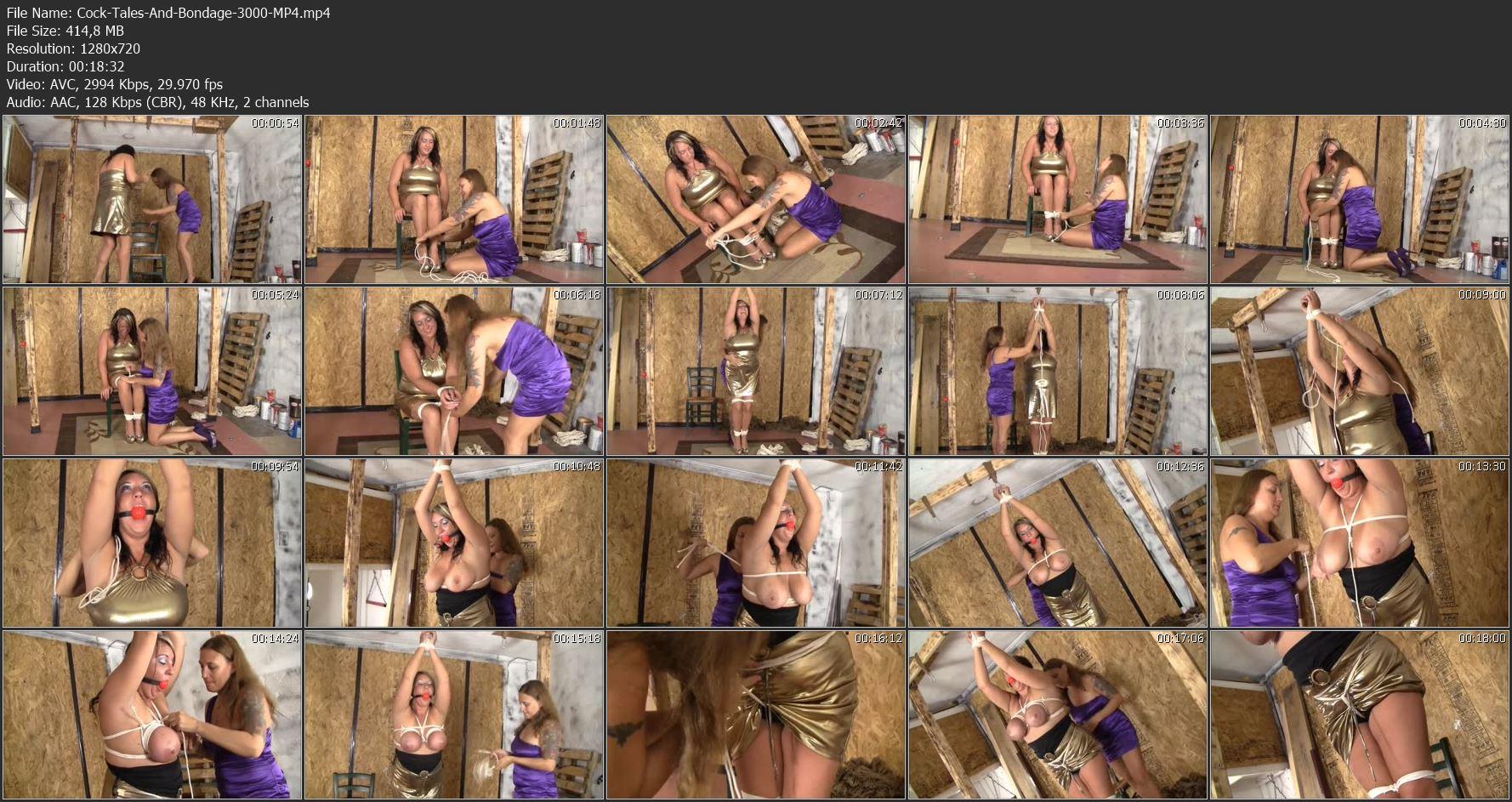 cock-tales-and-bondage-3000-mp4__image_3_.jpg