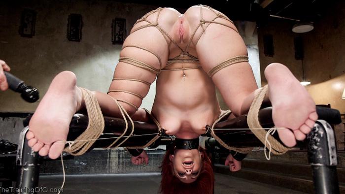 Free bondage video website
