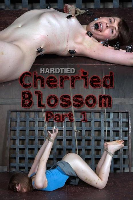 Blossom - Cherried Blossom - Part 1 (15. 2.2017 / HD 720p)
