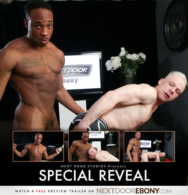 special-reveal-NDE-01.jpg
