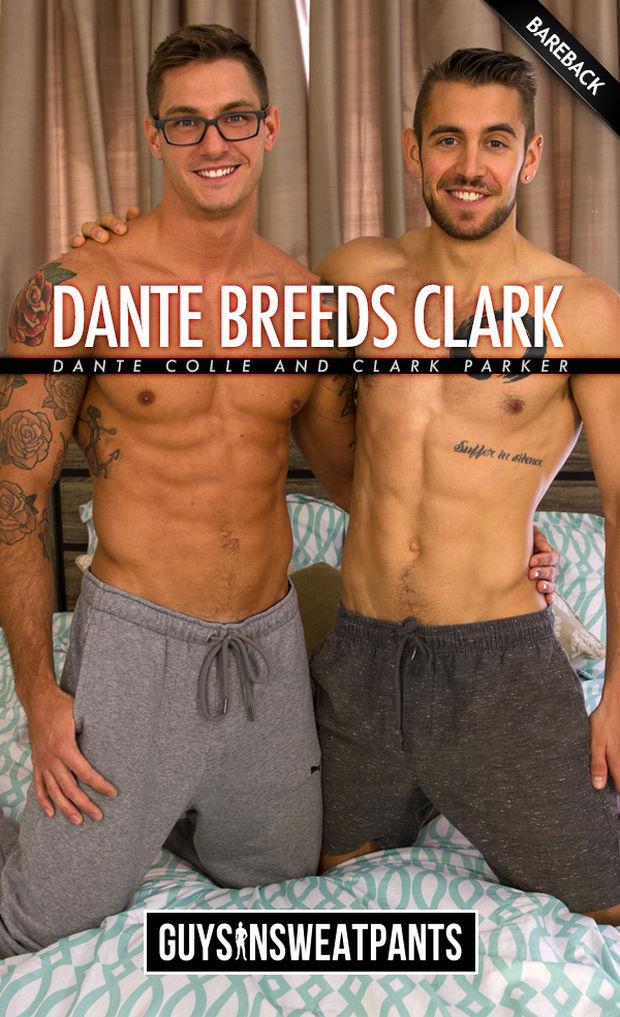 GISP – Dante Colle breeds Clark Parker