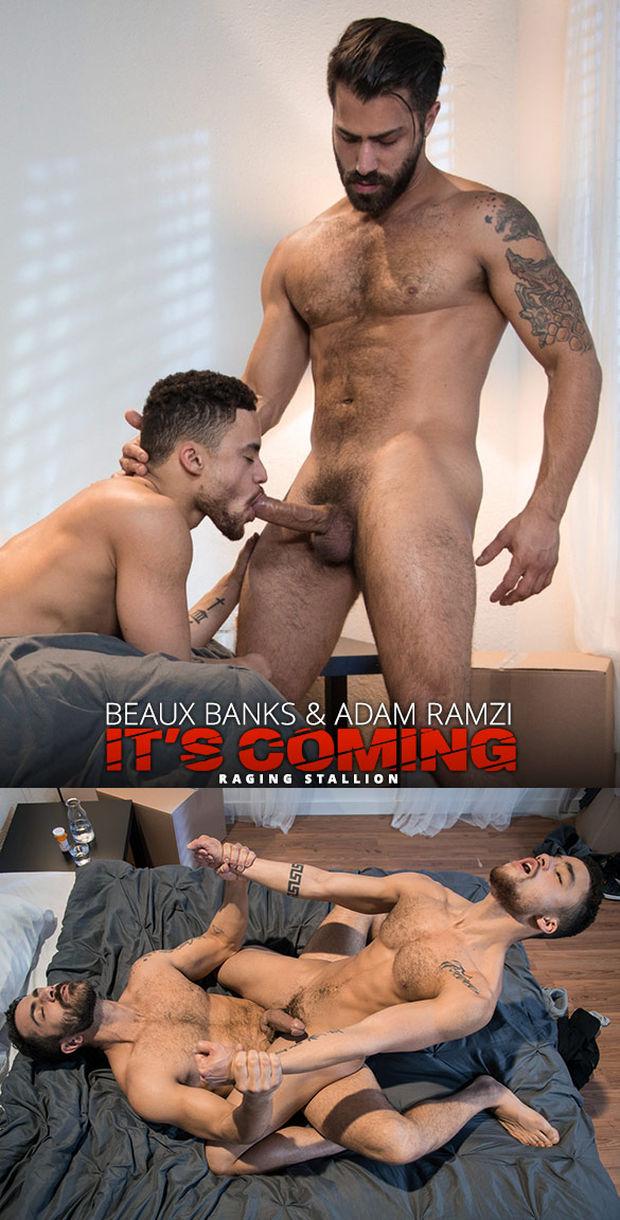 RS – It's Coming – Adam Ramzi, Beaux Banks