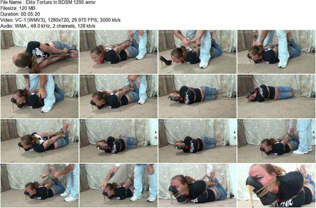 Elite_Torture_In_BDSM_1295.jpg