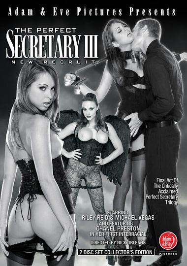 The Perfect Secretary 3 New Recruit (720p) Cover