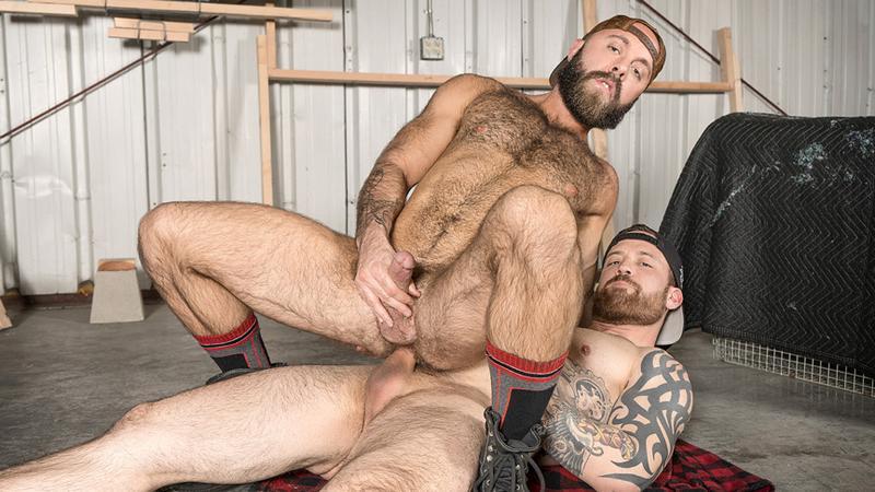 BRO_-_The_Lumber_Yard_-_Jordan_Levine___Teddy_Bear.jpg