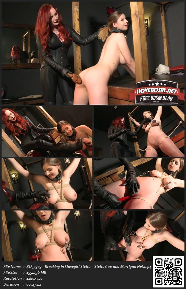 BO_0303_-_Breaking_in_Slavegirl_Stella_-__Stella_Cox_and_Morrigan_Hel.jpg
