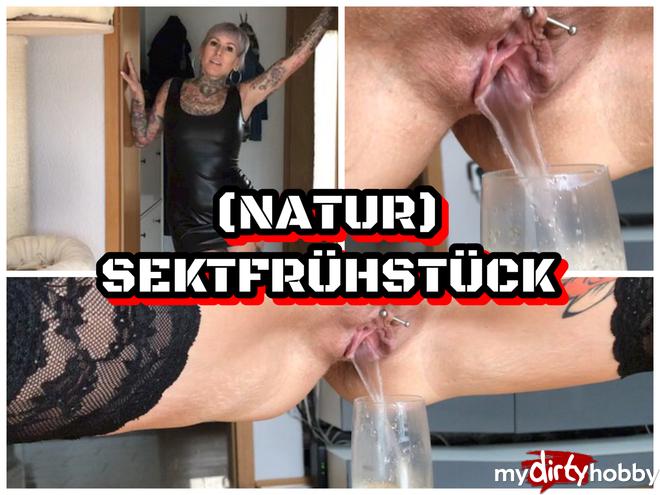 http://picstate.com/files/6870949_gr1fj/Nature_Champagne_breakfast_LadyKinkyCat.jpg