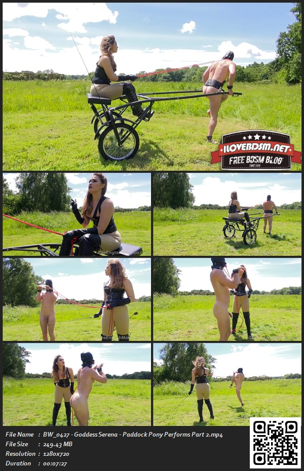 BW_0427_-_Goddess_Serena_-_Paddock_Pony_Performs_Part_2.jpg