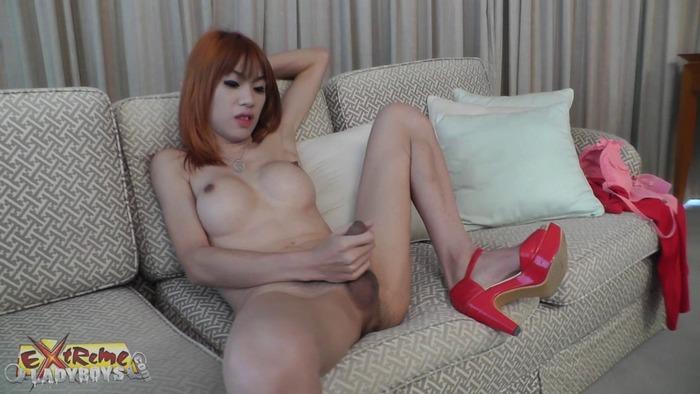 Net - Asian Ladyboy Solo play (HD 720p)