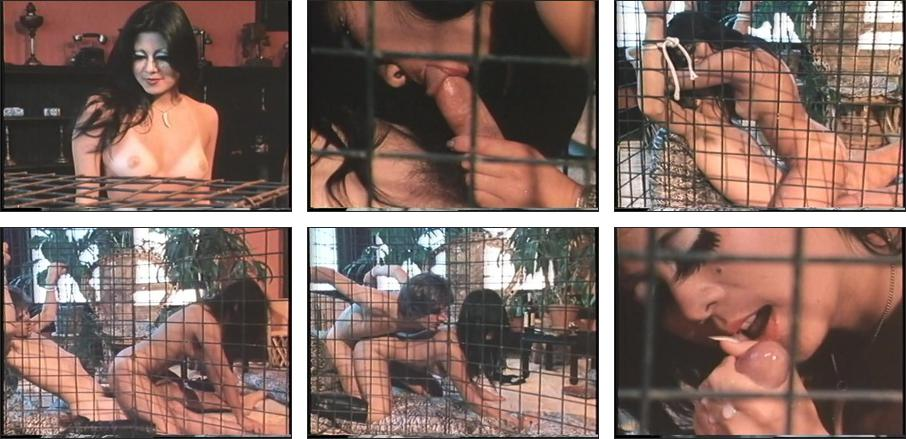 Oriental Temptations, Scene 7