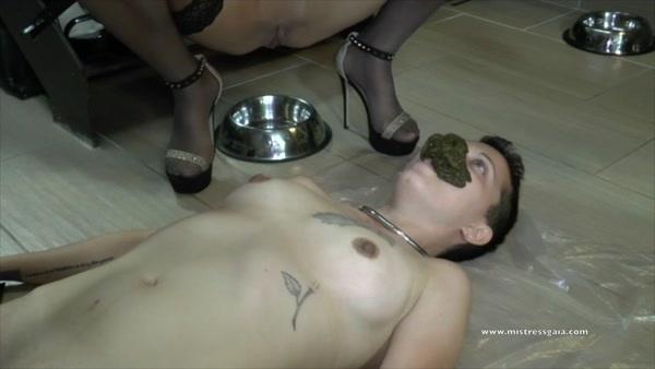 Mistress Gaia - Love me shit! (FullHD 1080p)