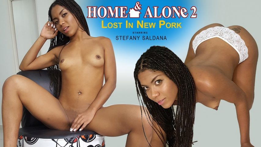 Home & Alone 2 - Lost in New Pork, Stefany Saldana, Feb 02, 2018, 3d vr porno, HQ 1440