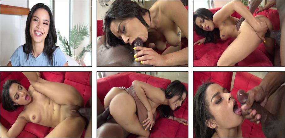 Porn's Top Black Models #5, Scene 2