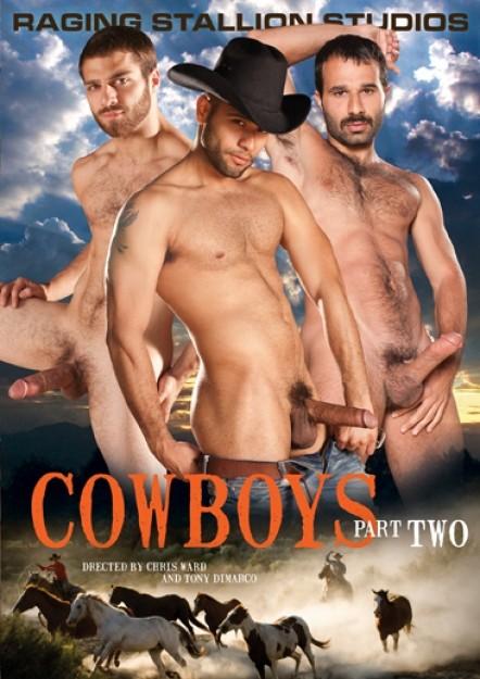 Raging Stallion - Cowboys Part 2