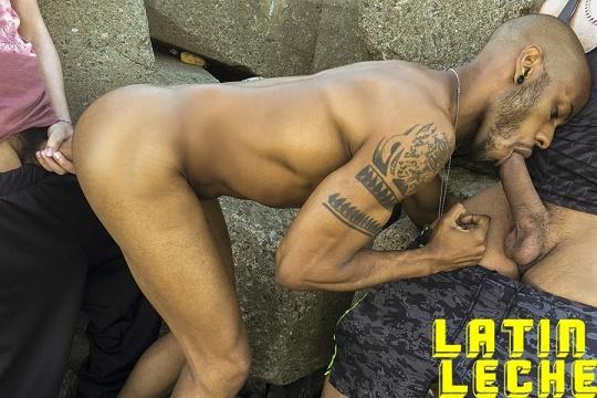 LatinLeche - Numero 91