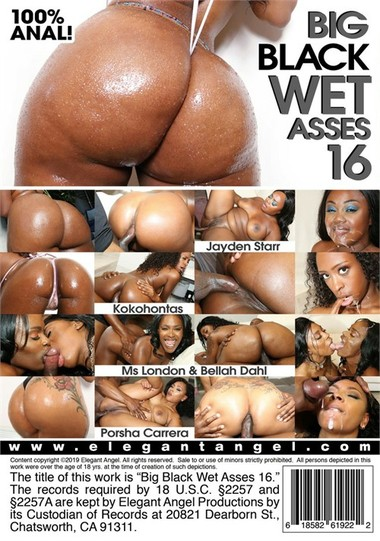 Big Black Wet Asses #16