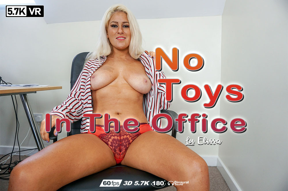 No Toys In The Office, Lu Elissa, Jan 10, 2019, 3d vr porno, HQ 2880