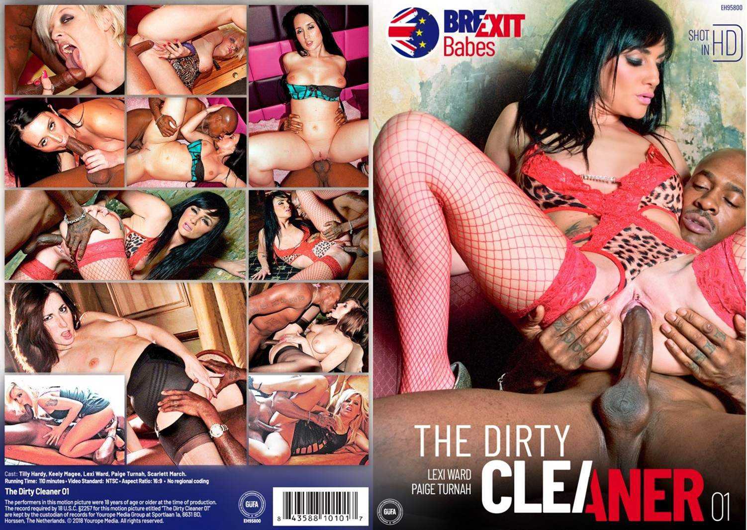 The Dirty Cleaner