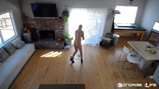 Rachel Greyhound Floor Cleaning - 10.21.2019