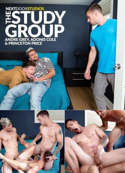 NDB - Princeton Price, Adonis Cole, Andre Grey - The Study Group