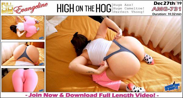 Evangeline - High On The Hog - AMG-731 (27.12.2019) [FullHD 1080p] (ArgentinaMegusta)