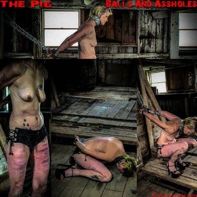 BrutalMaster – The Pig | 18 January 2020