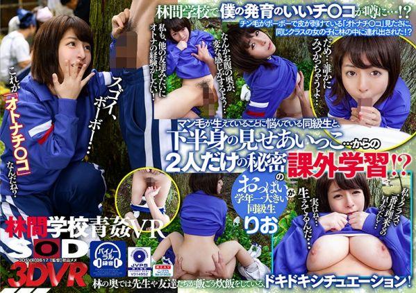 DSVR-0617 A - VR Japanese Porn