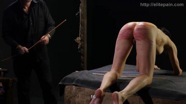 Punishment Methodology Part 5 [ElitePain] Amateur (1.34 GB)