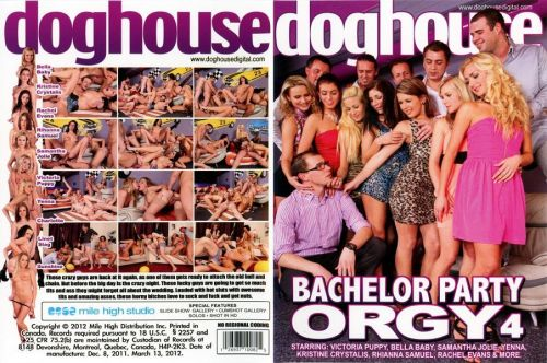 Bachelor Party Orgy 4 (2012)