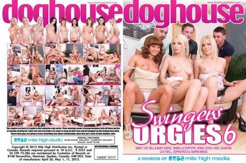 Swingers Orgies 6 (2013)