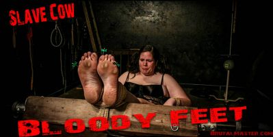 BrutalMaster – Slave Cow – Bloody Feet